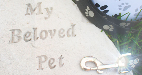 7 Creative Ways to Memorialize a Pet