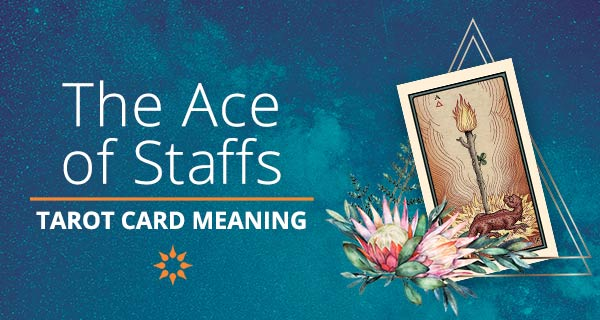 Ace of Staffs Tarot Card Meaning | California Psychics