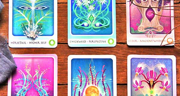 The Herbal Healing Deck: January 20 – 26
