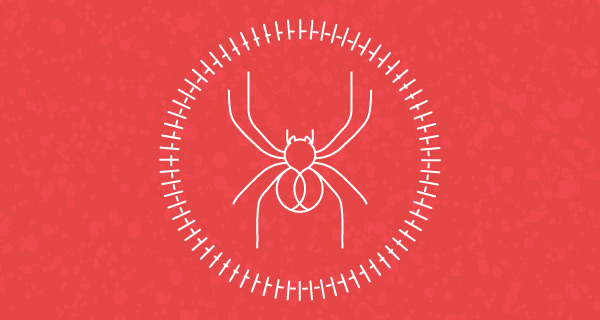 Meaning of a Spider Sighting | California Psychics