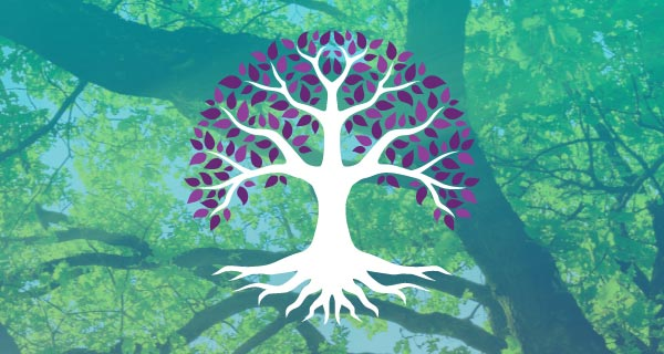 Connect to the Earth with Your Celtic Tree Sign | California Psychics