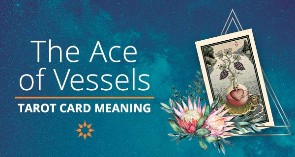 Ace of Vessels Tarot Card Meaning | California Psychics