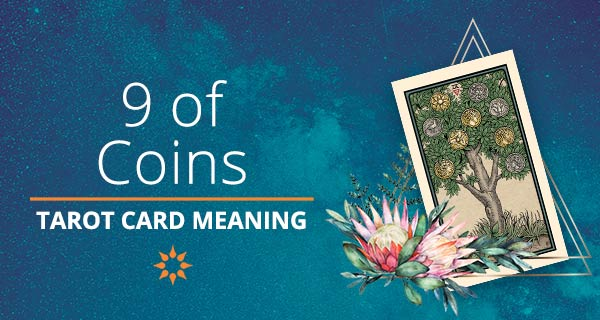 Nine of Coins Tarot Card Meaning   California Psychics