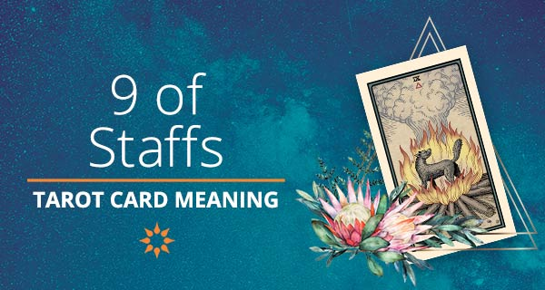 Nine of Staffs Tarot Card Meaning   California Psychics