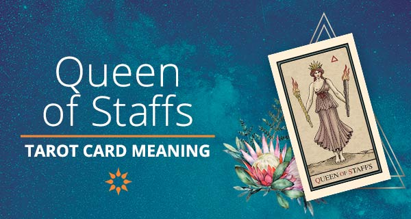Queen of Staffs Tarot Card Meaning   California Psychics
