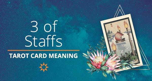 Three of Staffs Tarot Card Meaning   California Psychics