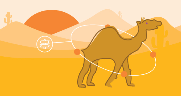 Meaning of a Camel Sighting | California Psychics