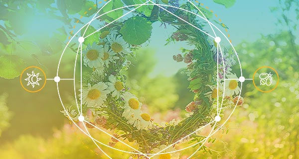 2021 Spring Equinox Horoscope: Balance and Growth | California Psychics