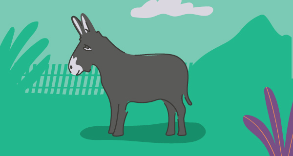 Meaning of a Donkey Sighting | California Psychics