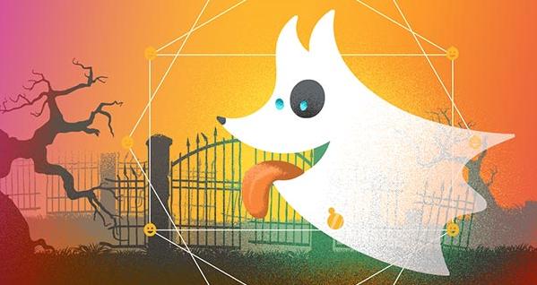 Animal Ghost Encounters Animal Spirit Stories from Pet Mediums | California Psychics